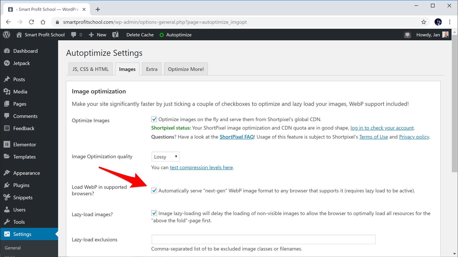 Load WebP settings in Autoptimize